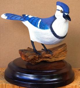 Blue Jay  by Al Bonar
