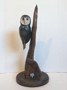 Barn Owl by Al Bonar
