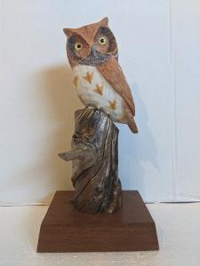 Screech Owl by Al Bonar