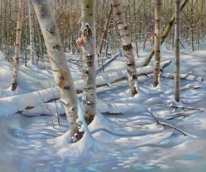 A Dappled Blanket by Barbara McGuey