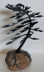 Windswept Pine 4 by Cathy Mark
