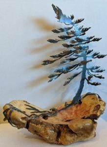 Burl & Windswept Pine by Cathy Mark
