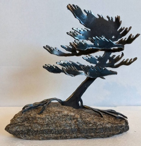 Windswept Pine 1 by Cathy Mark