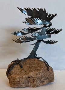 Windswept Pine 3 by Cathy Mark