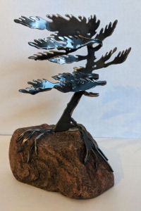 Windswept Pine (Small) by Cathy Mark
