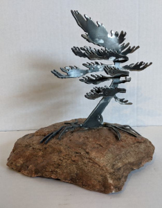 Windswept Pine VI (Small) by Cathy Mark