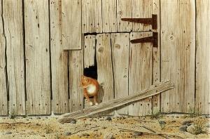Mouser by Conrad Mieschke