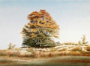 September October by Conrad Mieschke