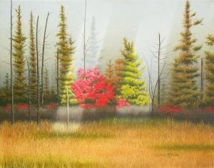 Northern Ontario by Conrad Mieschke
