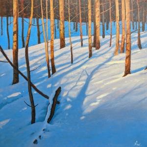 Silent Shadows by Cyril Cox