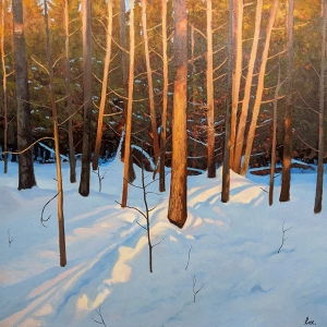 Winter's Last Light by Cyril Cox