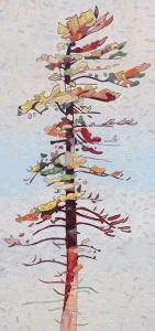 Nimigan Pine by David Grieve