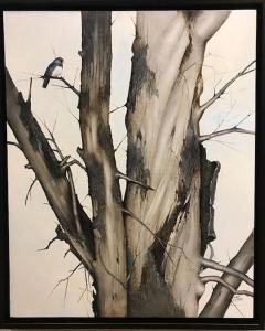Thorn Tree Dark Eyed Junco by Eddie LePage