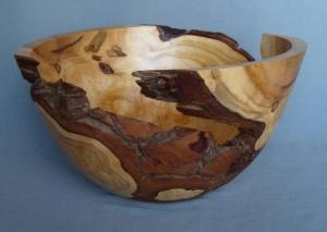 Cedar Burl by Frank DiDomizio