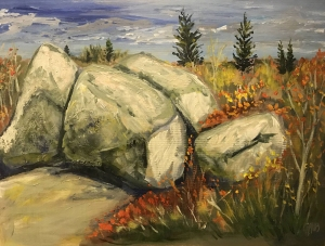 Bruce County Boulders by Gavin Mclay
