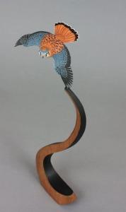American Kestrel by Gilles Prud'homme