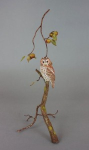 Tawny Owl by Gilles Prud'homme