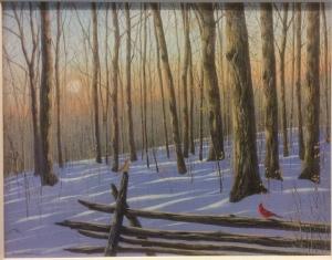 Forest Light by Jake Vandenbrink