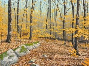 The Autumn Woods by Jake Vandenbrink