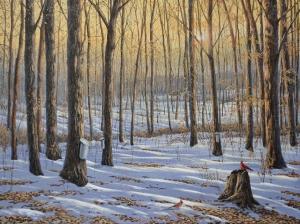 Welcoming the Sunrise by Jake Vandenbrink