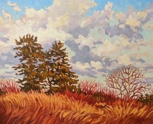 December Sky by Jeffrey Boron