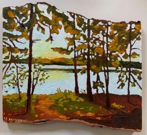 Beaver Lake by Lauren Boissonneault