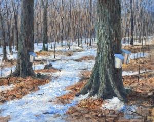 Canadian Maple by Lloyd Wilson