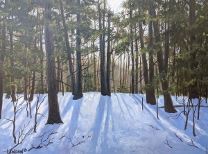 Winter Walk by Lloyd Wilson