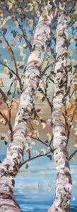 Birch Shades of Grey by Maya Eventov