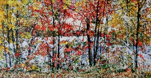 Autumn on the Pond 34 by Michael Zarowsky