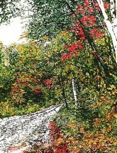 Road Through Fall by Michael Zarowsky