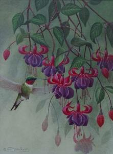 Hummingbird by Neil Blackwell