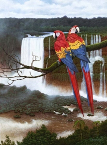 Jewels Of The Rainforest by Neil Blackwell