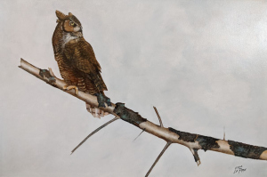 Hanging Out Owl by Eddie LePage