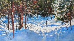 Sunlight Streaming Across a Winter Trail by Michael Zarowsky