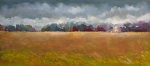 Storm Blowing In by Paul Chester