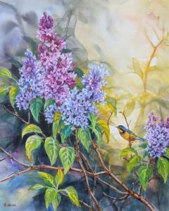 Spring Fragrance (Canada Warbler) by Wee Lee